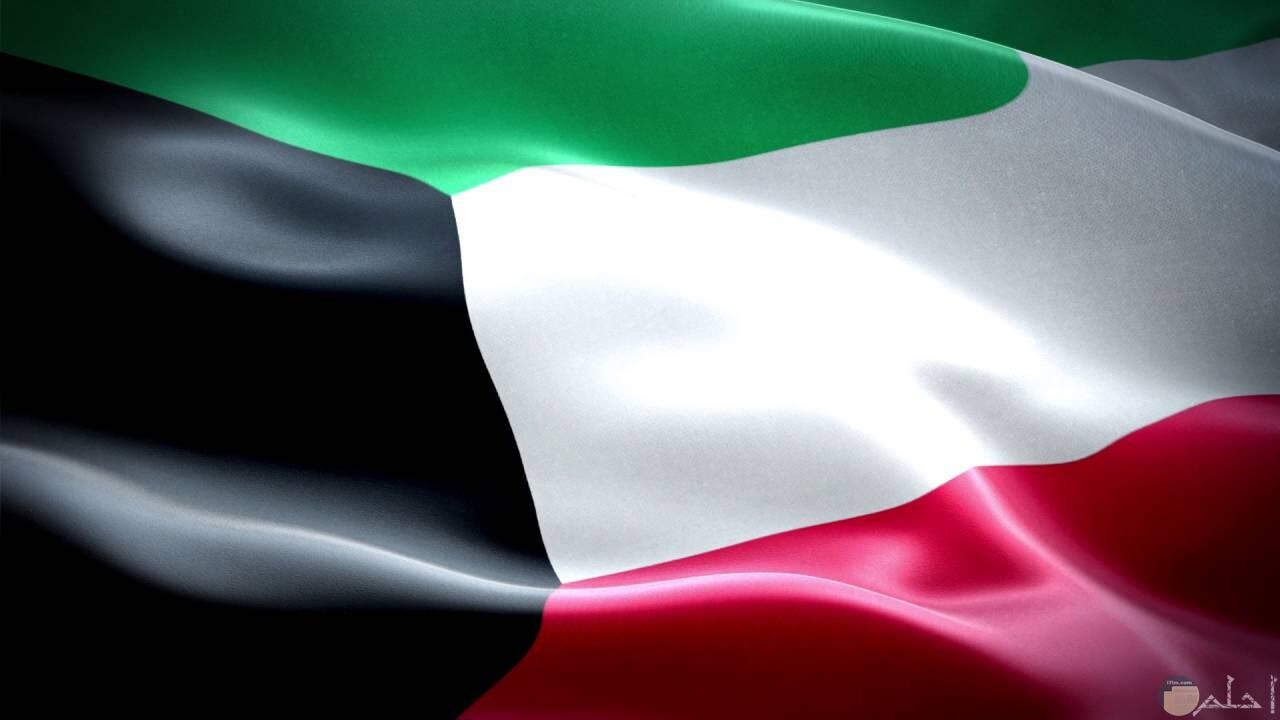 بالوانه المميزة يتألق علم فلسطين