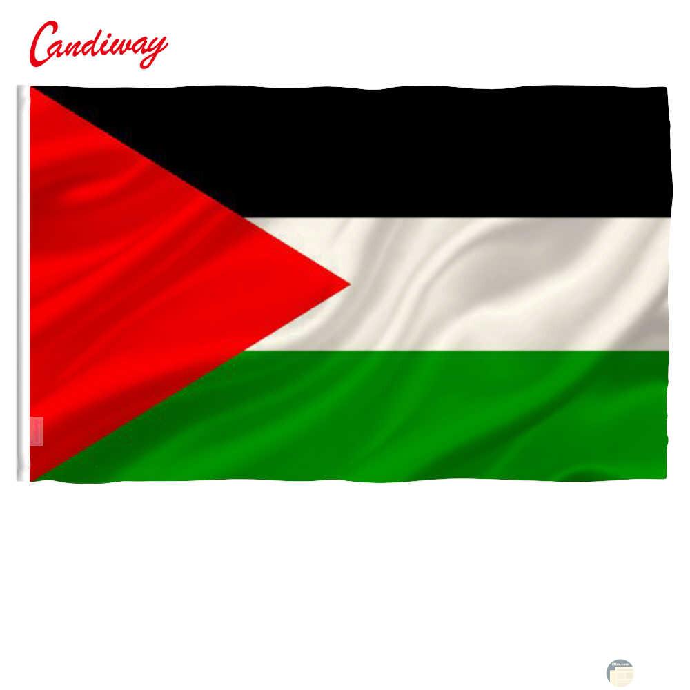 اسمر وابيض واخضر واحمر فى علم فلسطين