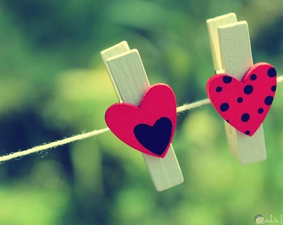 قلبين معلقين