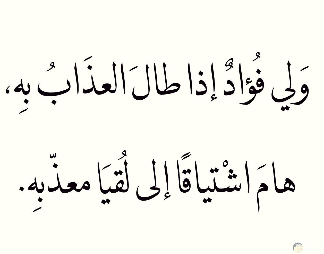ولي فؤاد إذا طال العذاب به هام اشتياقا إلي لقيا معذبه