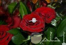 صور جميلة للعرسان