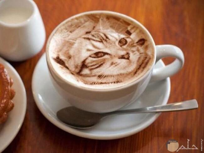 صورة قطة على وجه القهوة
