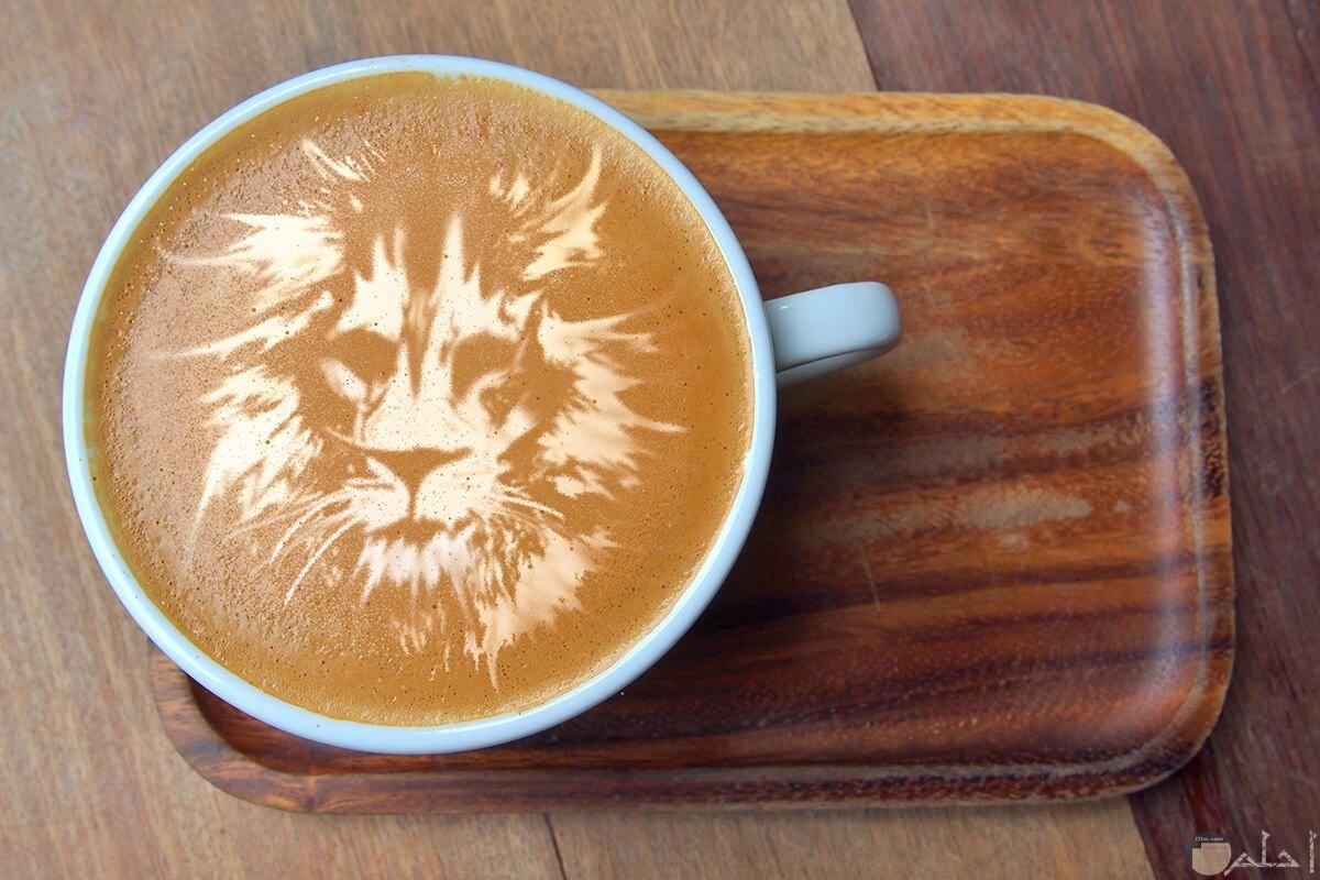 أسد على وش القهوة